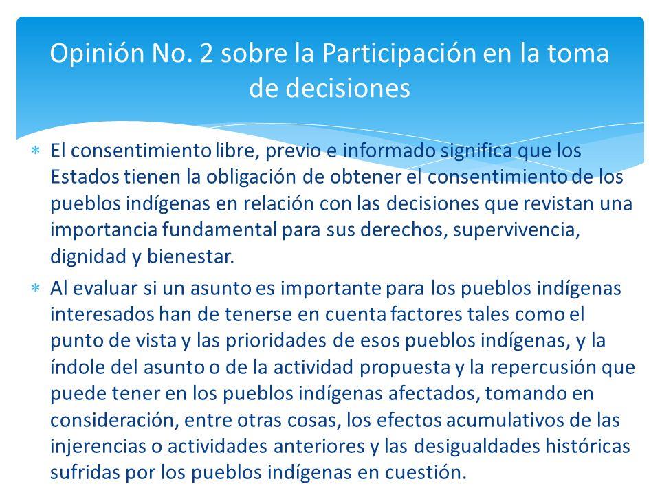 Opinión No. 2 sobre la Participación en la toma de decisiones