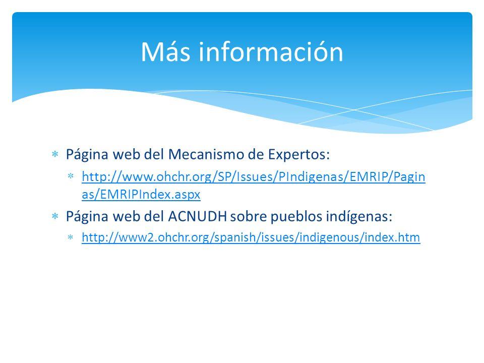 Más información Página web del Mecanismo de Expertos: