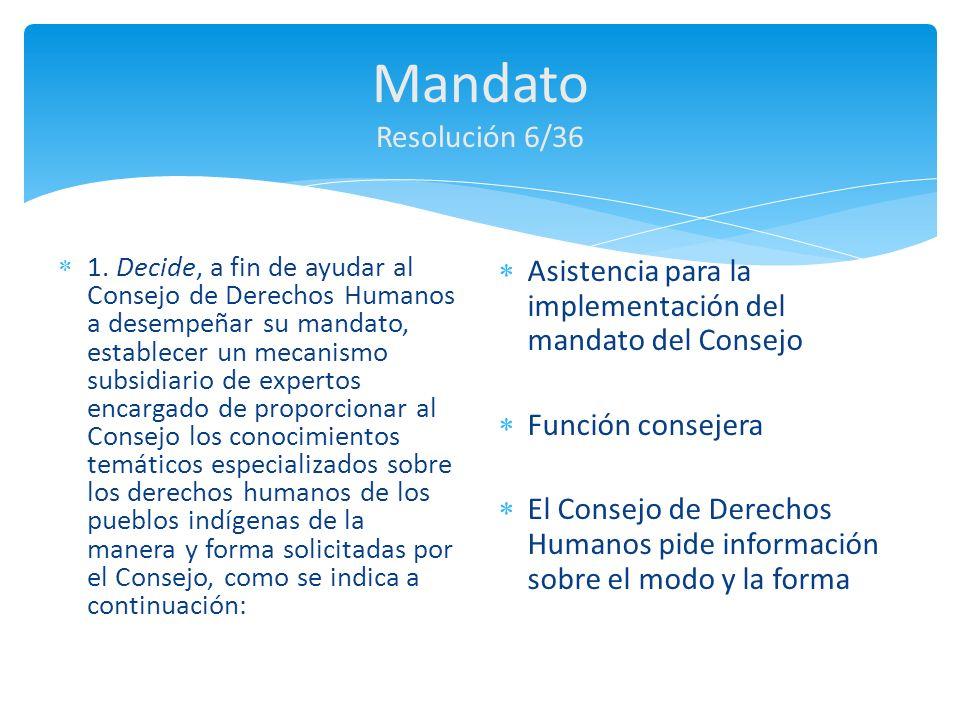 Mandato Resolución 6/36 Asistencia para la implementación del mandato del Consejo. Función consejera.