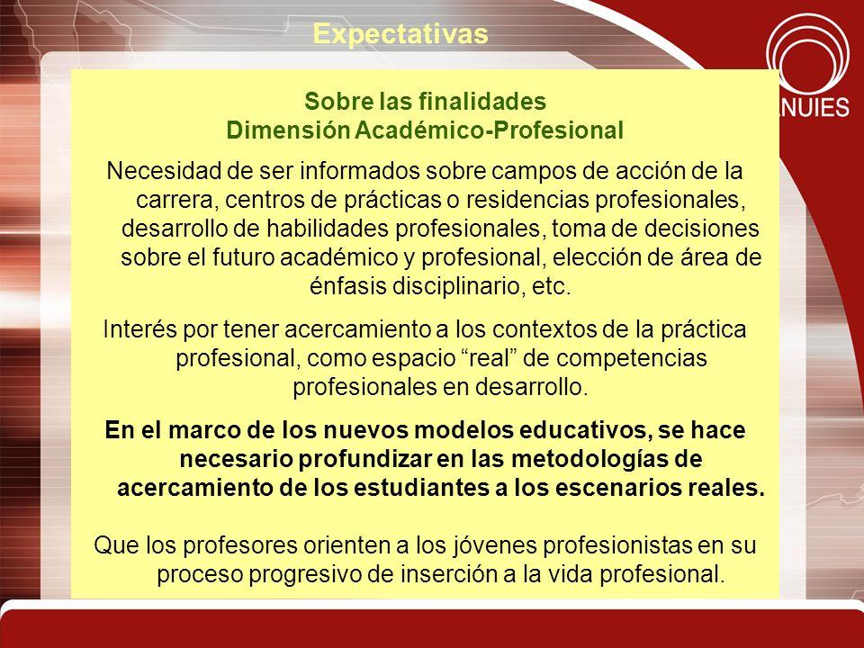 Dimensión Académico-Profesional