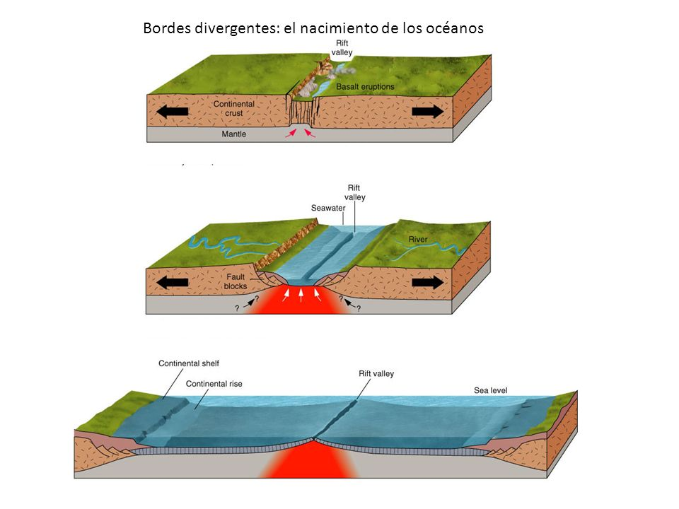 Bordes divergentes: el nacimiento de los océanos
