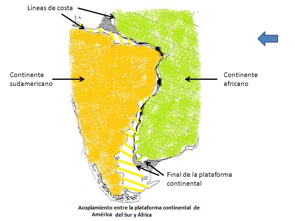 Líneas de costa Continente sudamericano Continente africano Final de la plataforma continental