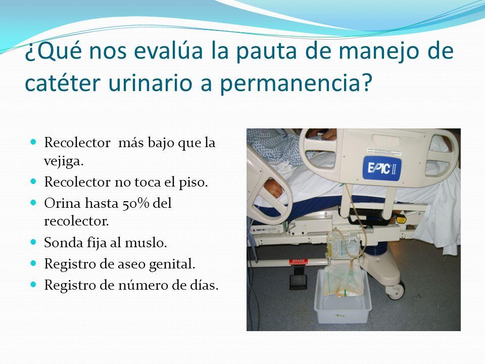 ¿Qué nos evalúa la pauta de manejo de catéter urinario a permanencia
