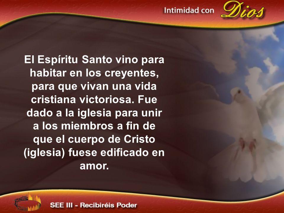 El Espíritu Santo vino para habitar en los creyentes, para que vivan una vida cristiana victoriosa. Fue dado a la iglesia para unir a los miembros a fin de que el cuerpo de Cristo (iglesia) fuese edificado en amor.