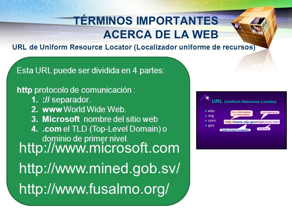 TÉRMINOS IMPORTANTES ACERCA DE LA WEB