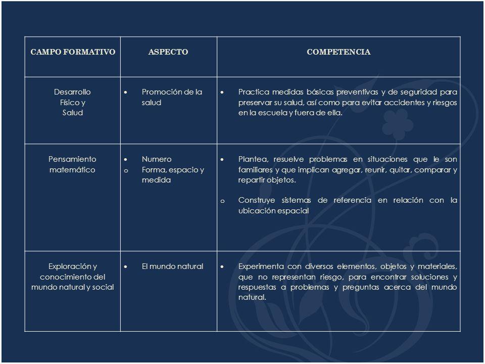 CAMPO FORMATIVO COMPETENCIA