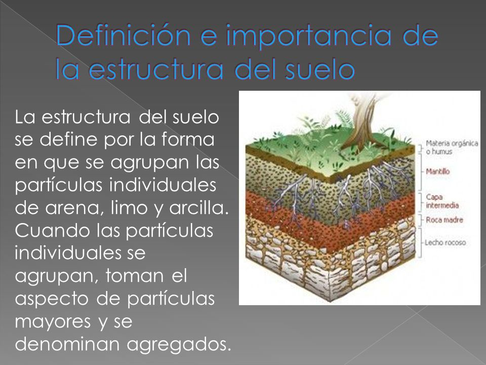 edafologia estructura del suelo ppt descargar