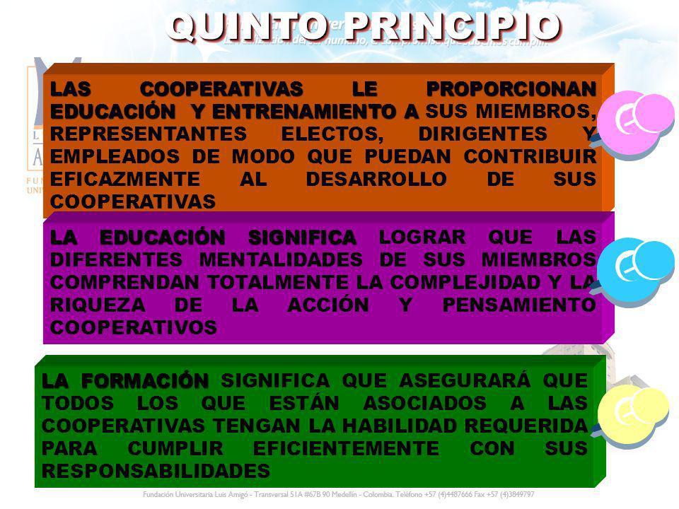 QUINTO PRINCIPIO