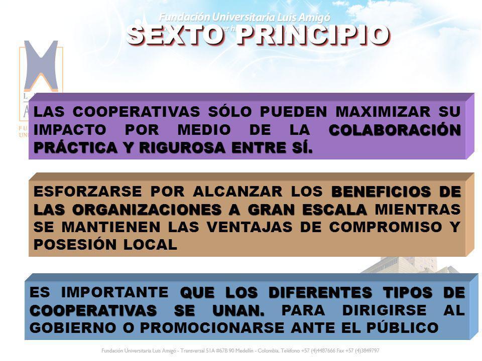 SEXTO PRINCIPIO LAS COOPERATIVAS SÓLO PUEDEN MAXIMIZAR SU IMPACTO POR MEDIO DE LA COLABORACIÓN PRÁCTICA Y RIGUROSA ENTRE SÍ.