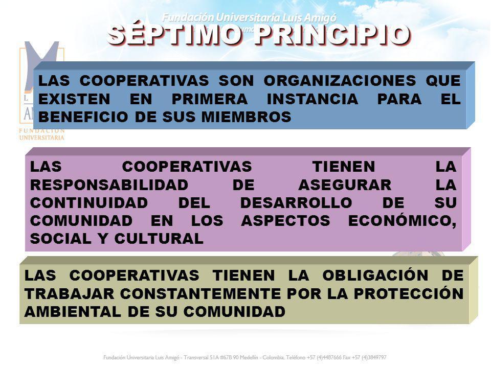 SÉPTIMO PRINCIPIO LAS COOPERATIVAS SON ORGANIZACIONES QUE EXISTEN EN PRIMERA INSTANCIA PARA EL BENEFICIO DE SUS MIEMBROS.