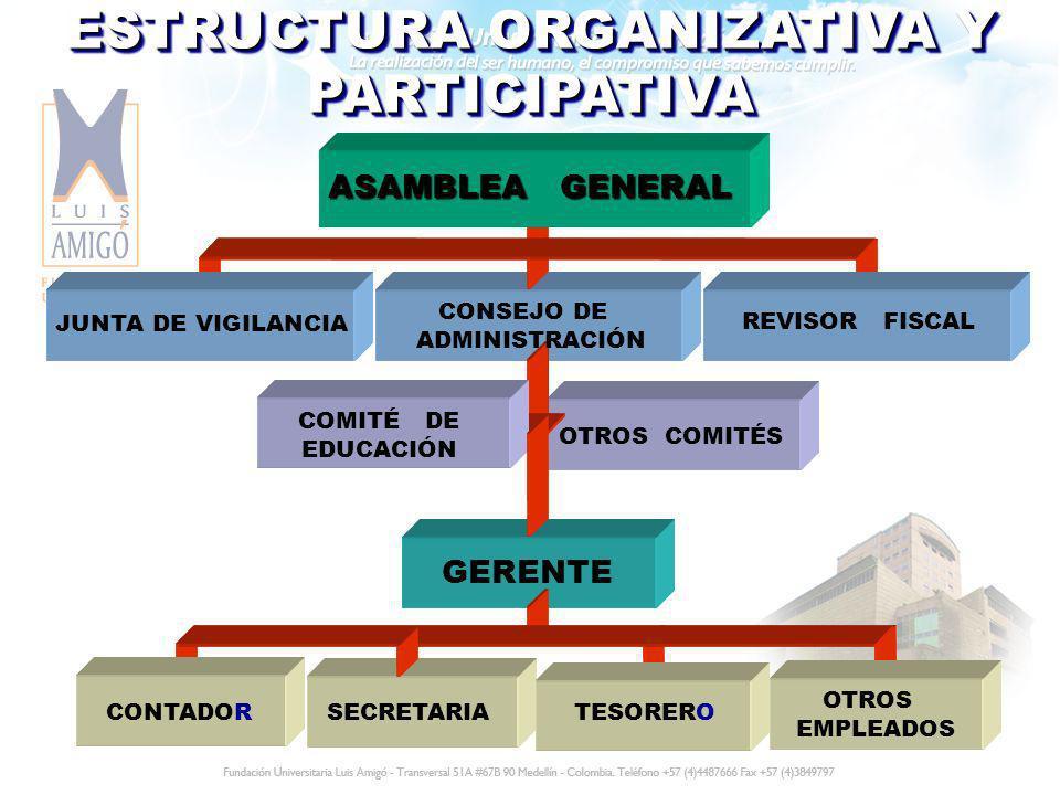 ESTRUCTURA ORGANIZATIVA Y PARTICIPATIVA