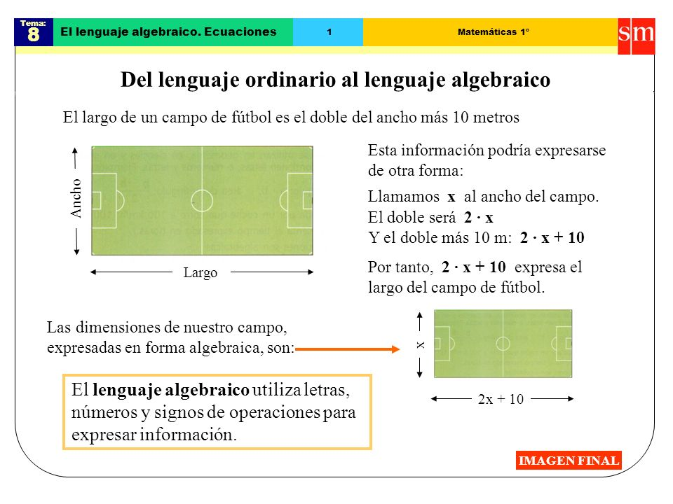 Del lenguaje ordinario al lenguaje algebraico