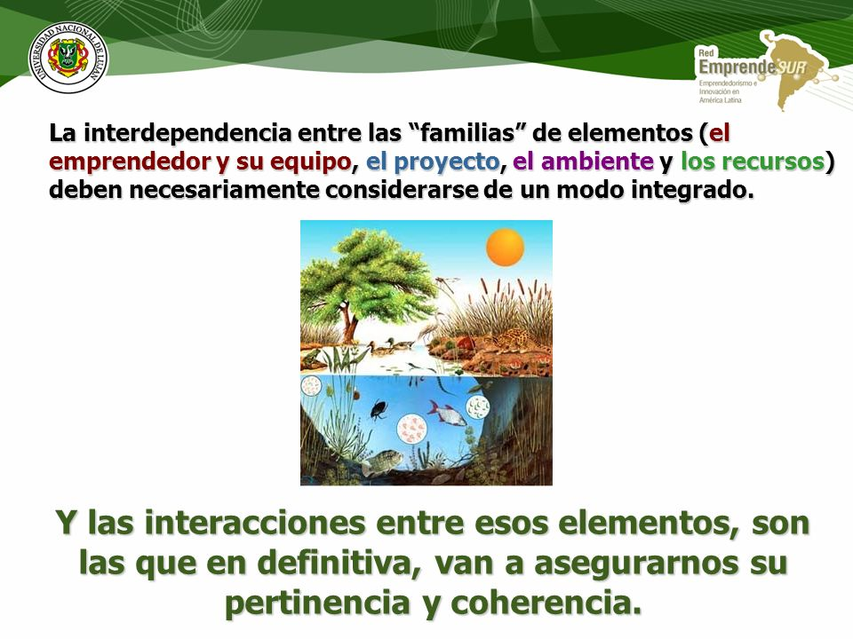 La interdependencia entre las familias de elementos (el emprendedor y su equipo, el proyecto, el ambiente y los recursos) deben necesariamente considerarse de un modo integrado.
