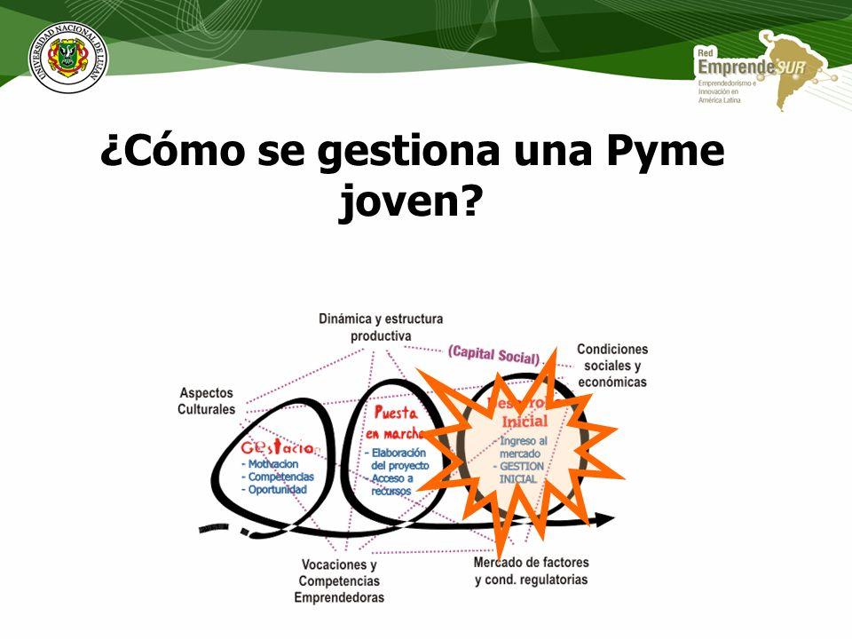 ¿Cómo se gestiona una Pyme joven