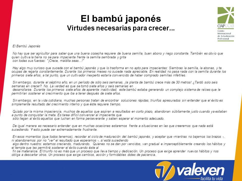 El bambú japonés Virtudes necesarias para crecer...
