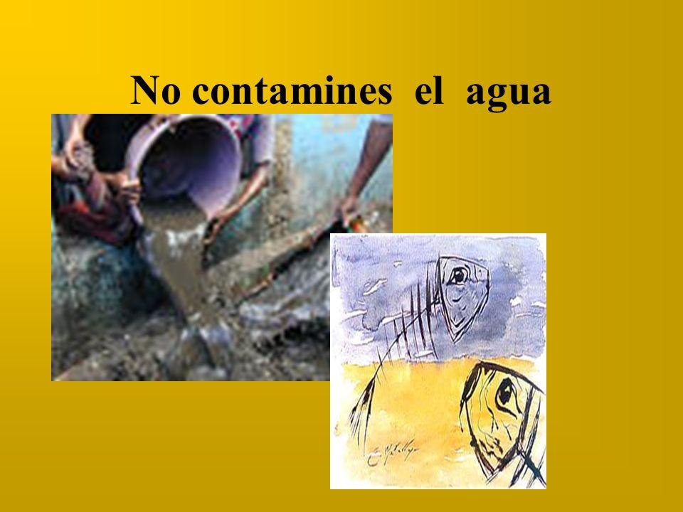 No contamines el agua