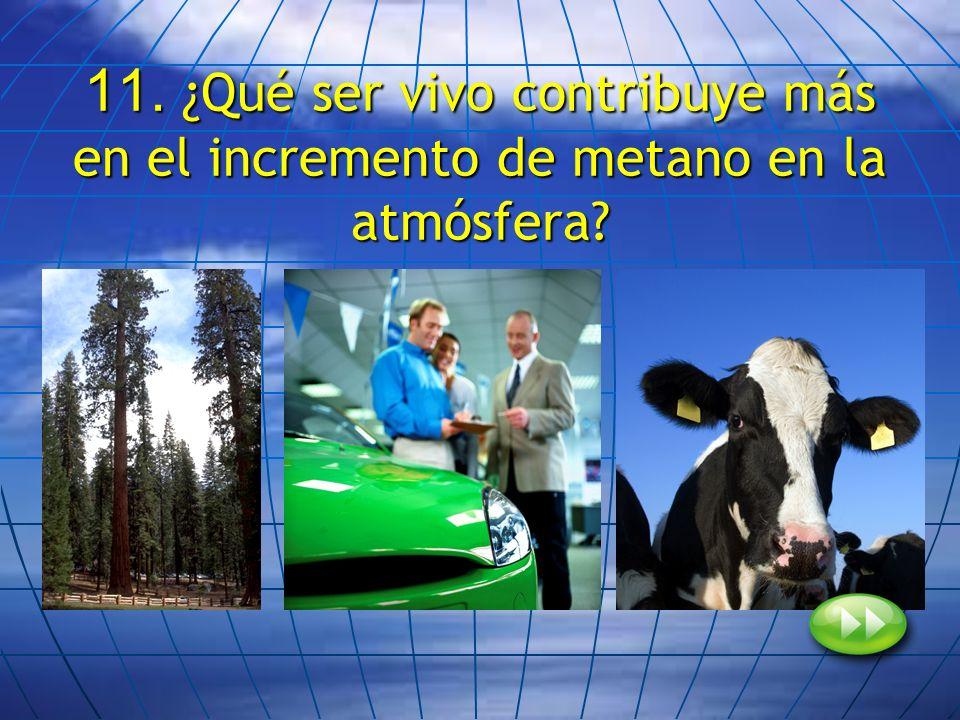 11. ¿Qué ser vivo contribuye más en el incremento de metano en la atmósfera