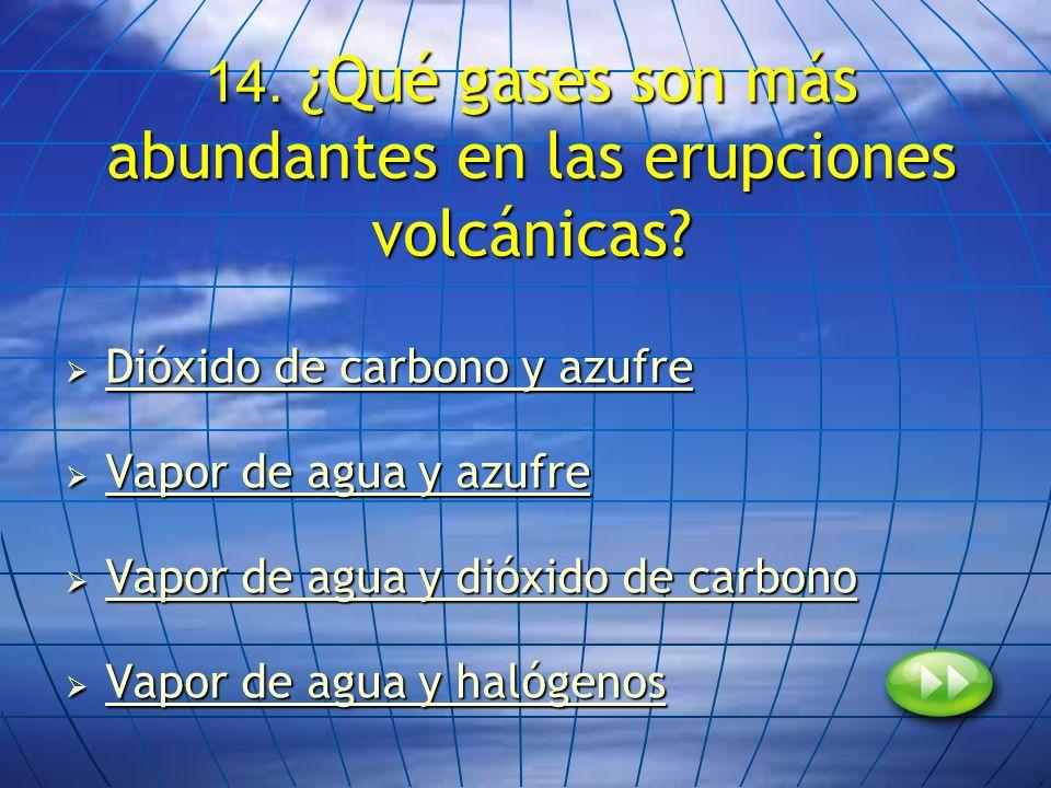 14. ¿Qué gases son más abundantes en las erupciones volcánicas