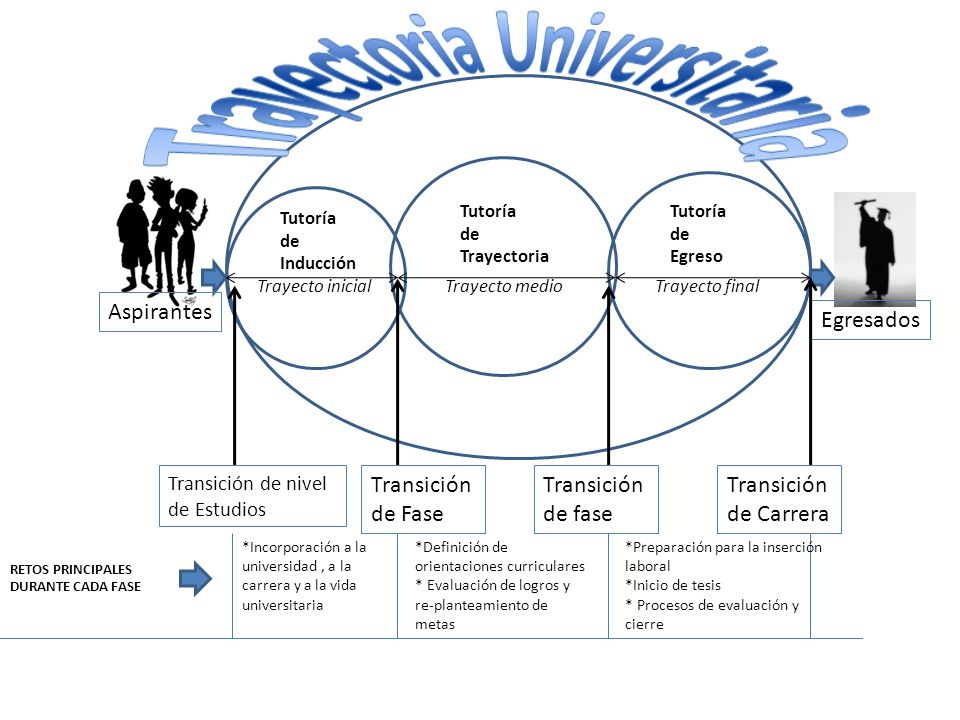 Trayectoria Universitaria