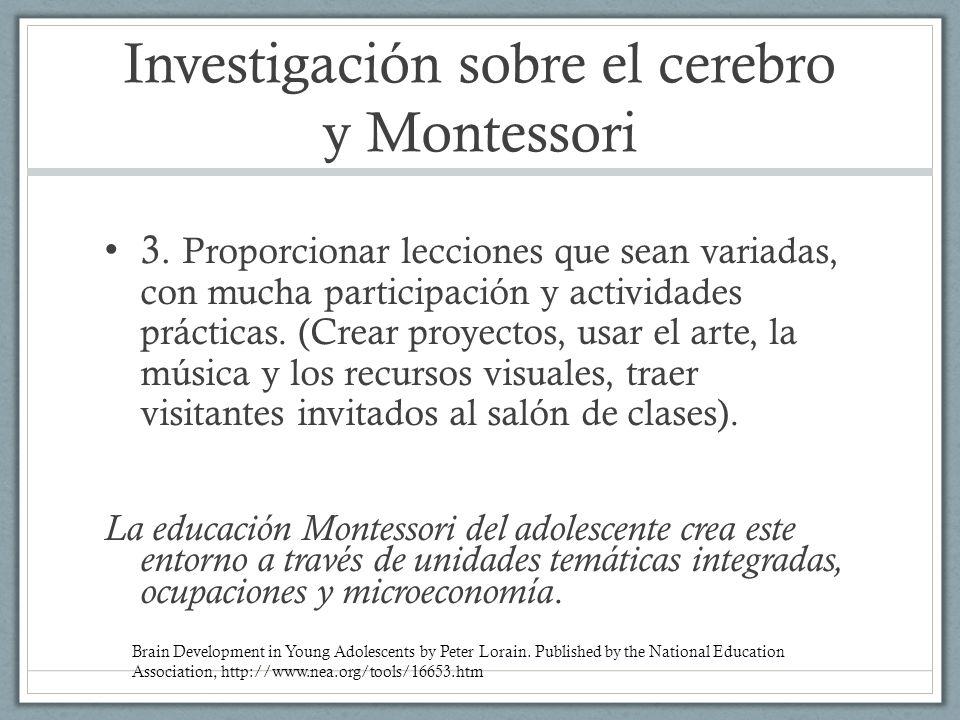 Investigación sobre el cerebro y Montessori
