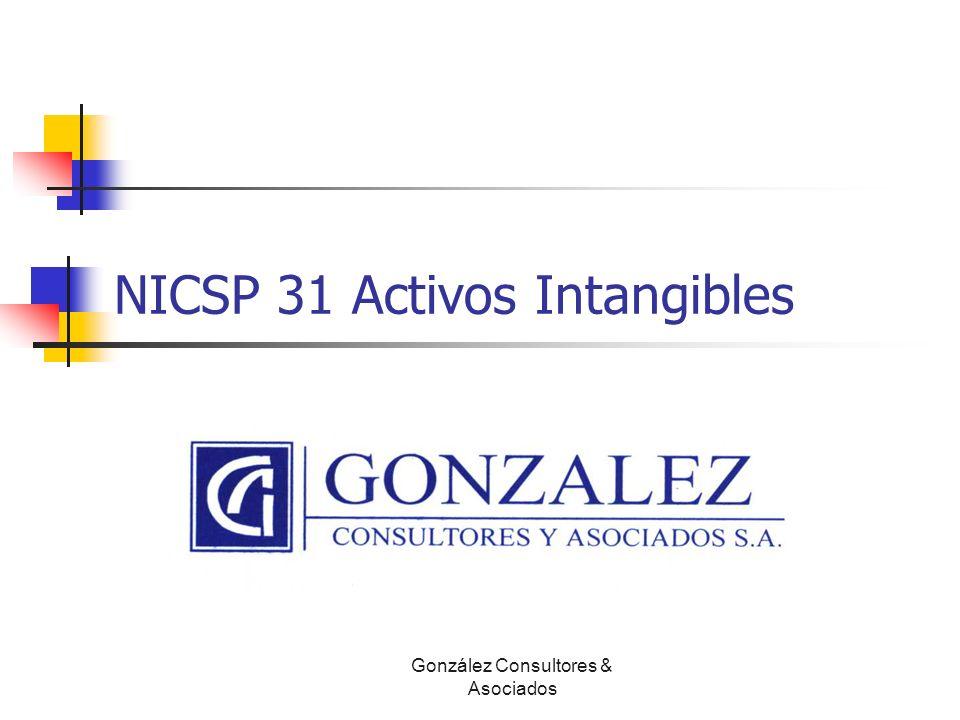 NICSP 31 Activos Intangibles