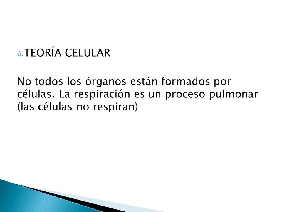 TEORÍA CELULAR No todos los órganos están formados por células.