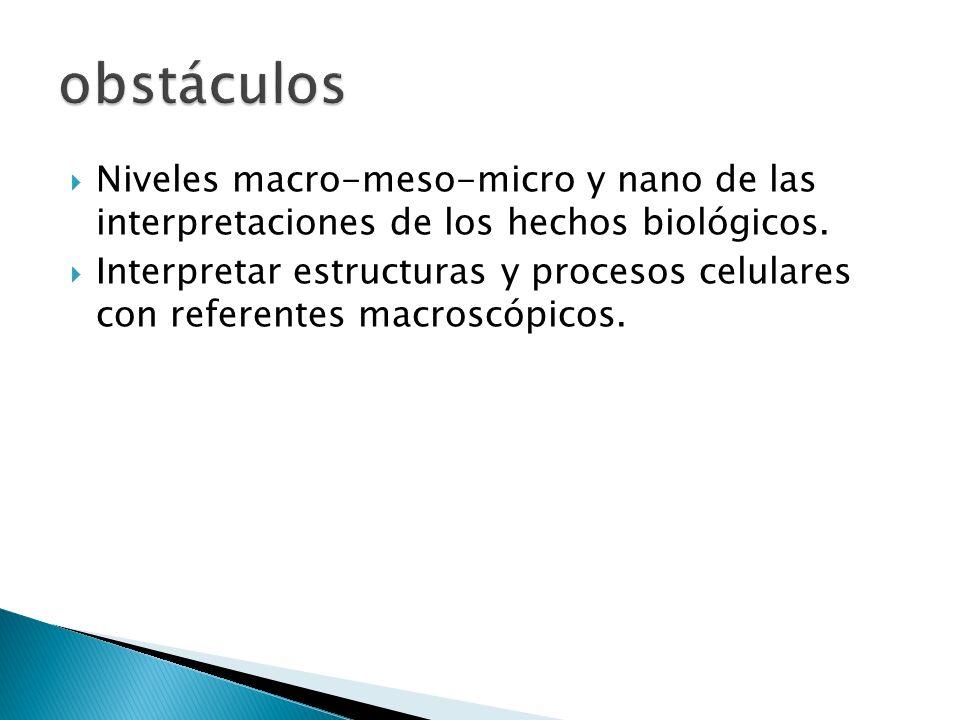 obstáculos Niveles macro-meso-micro y nano de las interpretaciones de los hechos biológicos.