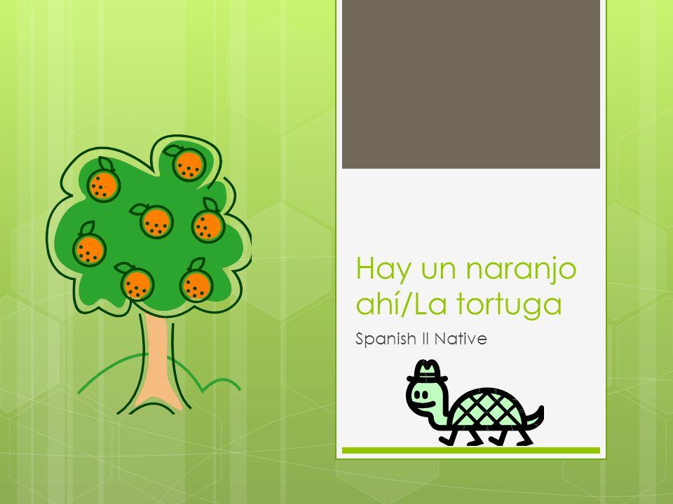 Hay un naranjo ahí/La tortuga