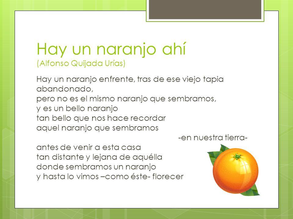 Hay un naranjo ahí (Alfonso Quijada Urías)