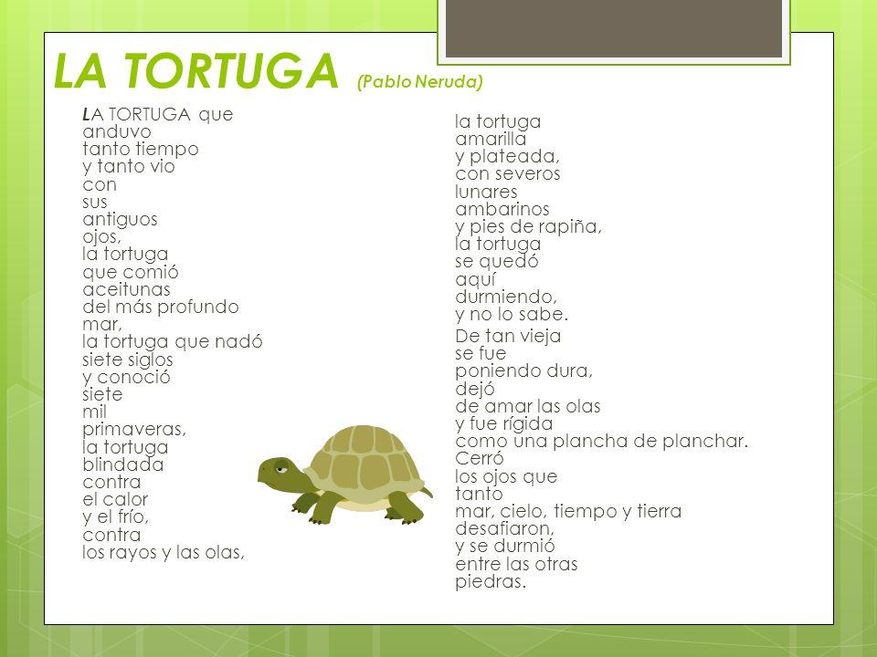 LA TORTUGA (Pablo Neruda)