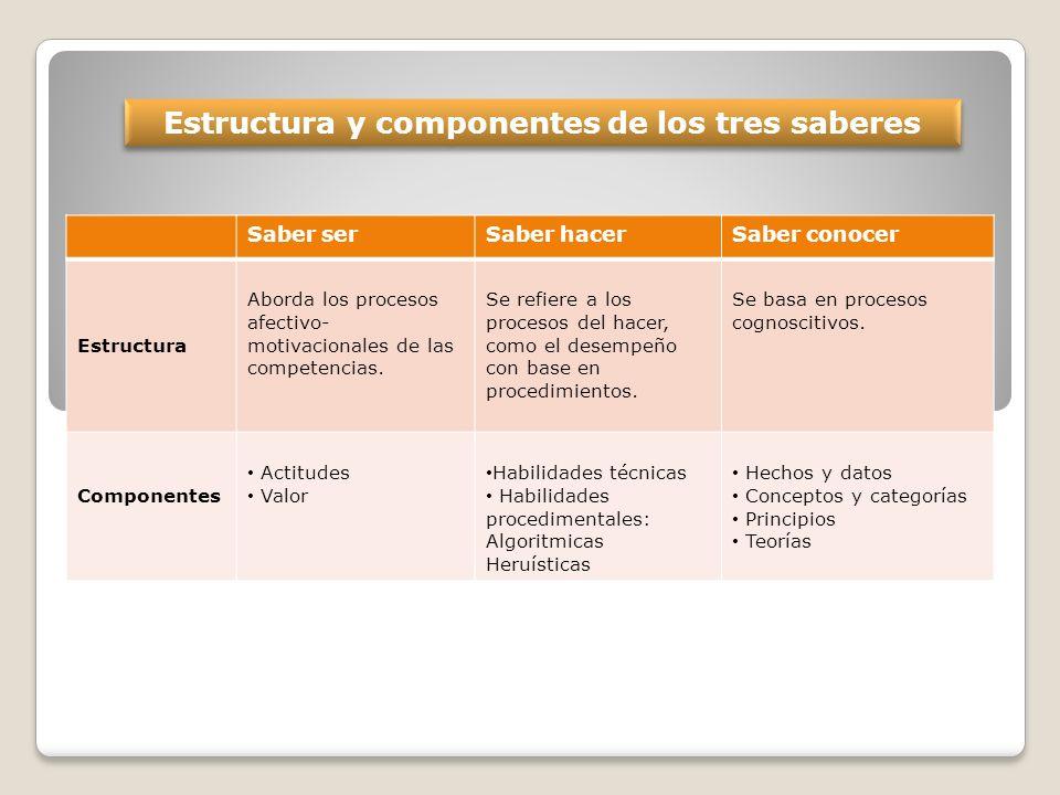 Estructura y componentes de los tres saberes