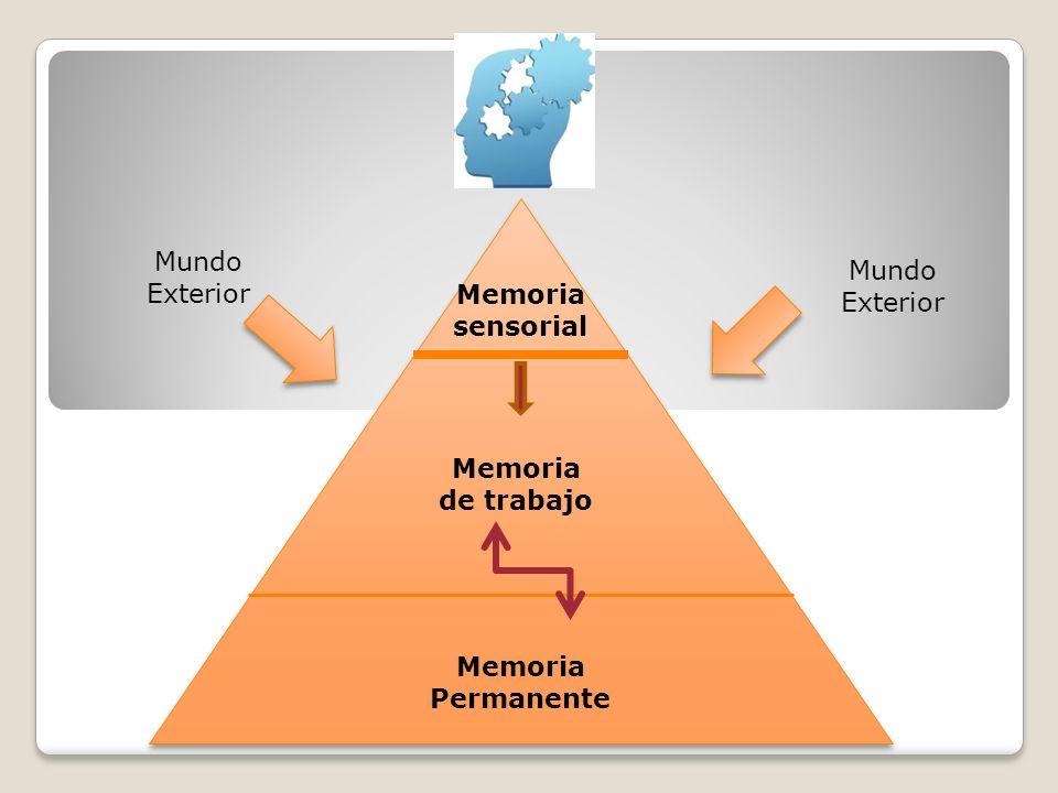 Mundo Exterior Mundo Exterior Memoria sensorial Memoria de trabajo Memoria Permanente