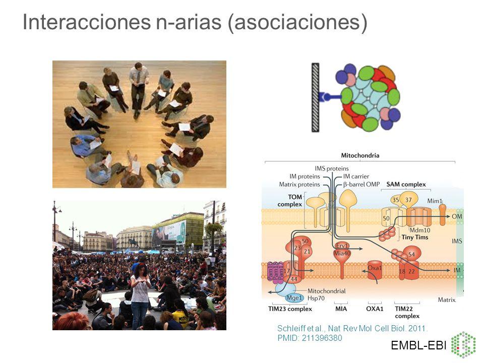 Interacciones n-arias (asociaciones)