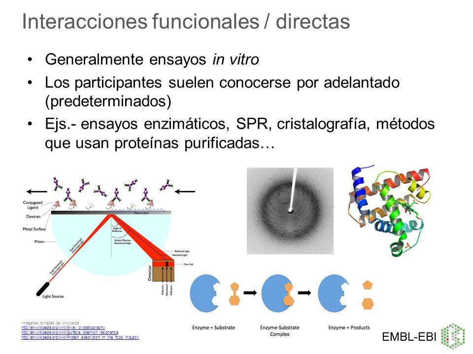 Interacciones funcionales / directas