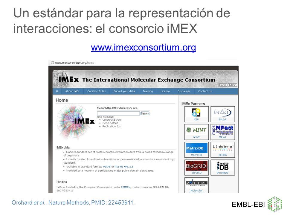 Un estándar para la representación de interacciones: el consorcio iMEX