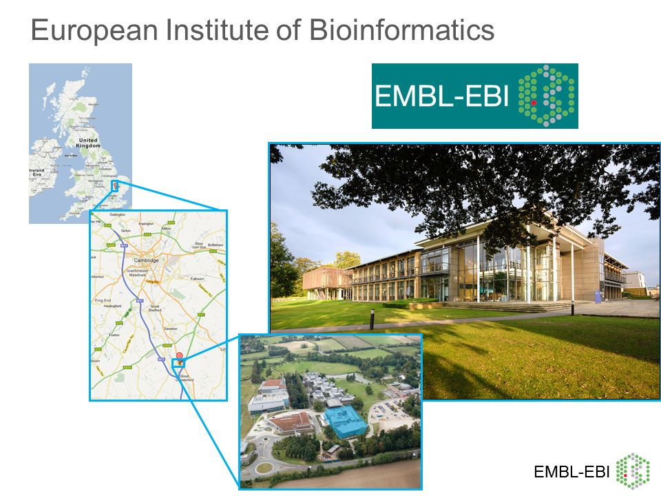 European Institute of Bioinformatics