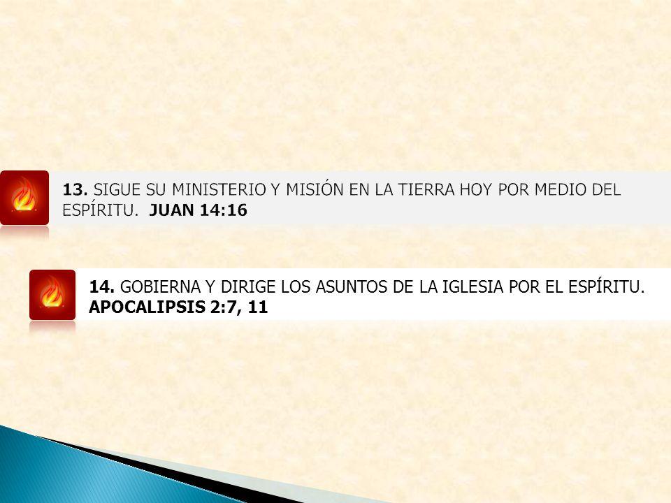 13. SIGUE SU MINISTERIO Y MISIÓN EN LA TIERRA HOY POR MEDIO DEL ESPÍRITU. JUAN 14:16