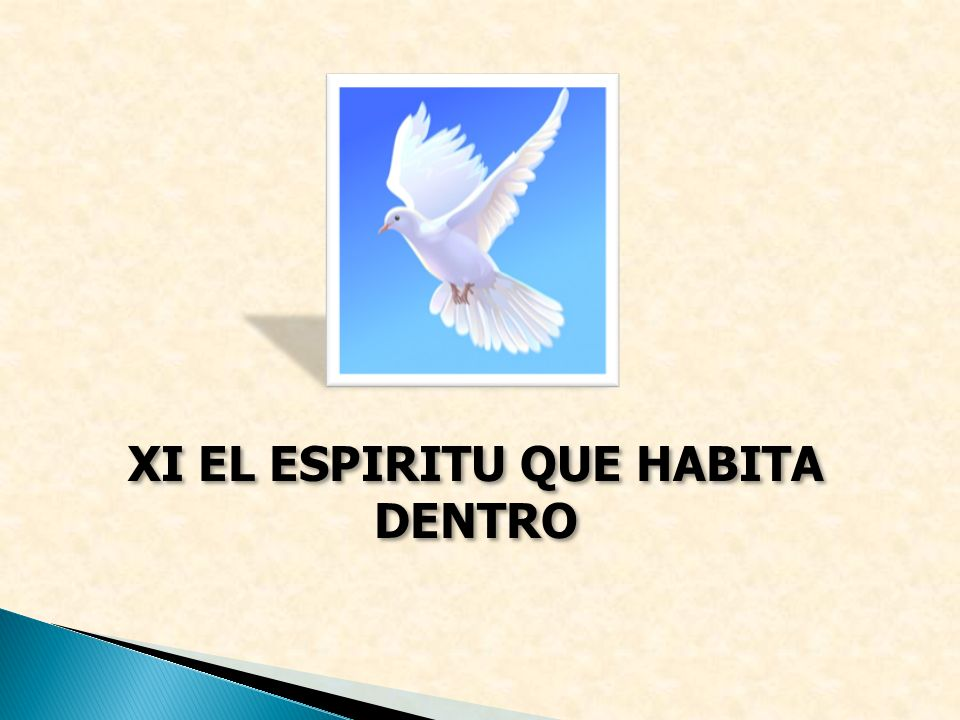 XI EL ESPIRITU QUE HABITA DENTRO