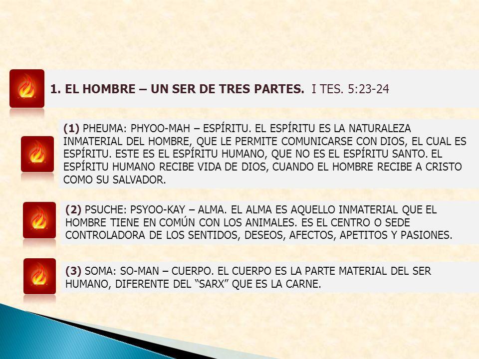 1. EL HOMBRE – UN SER DE TRES PARTES. I TES. 5:23-24