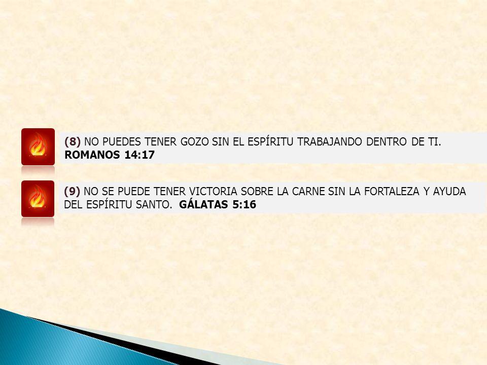 (8) NO PUEDES TENER GOZO SIN EL ESPÍRITU TRABAJANDO DENTRO DE TI.