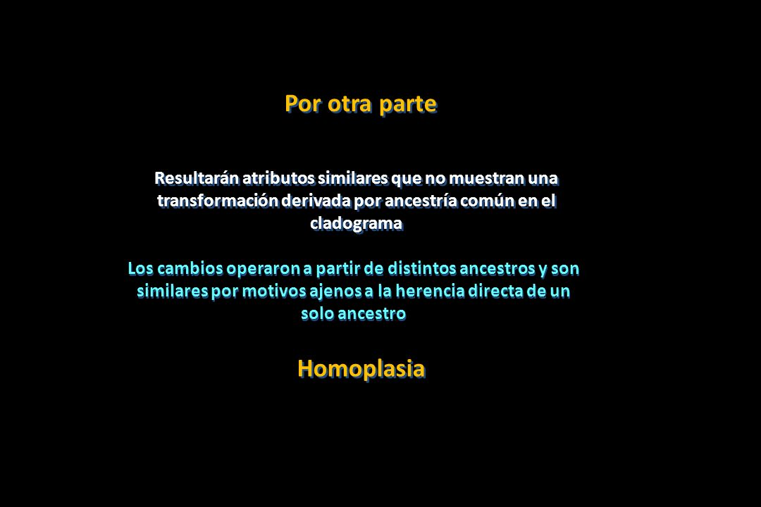 Por otra parte Homoplasia
