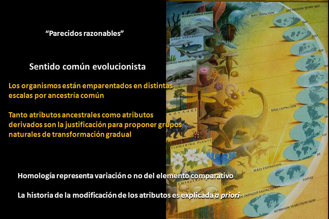 Sentido común evolucionista
