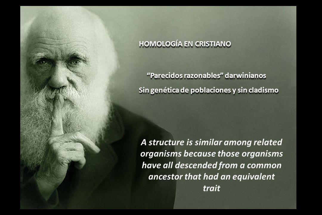 HOMOLOGÍA EN CRISTIANO