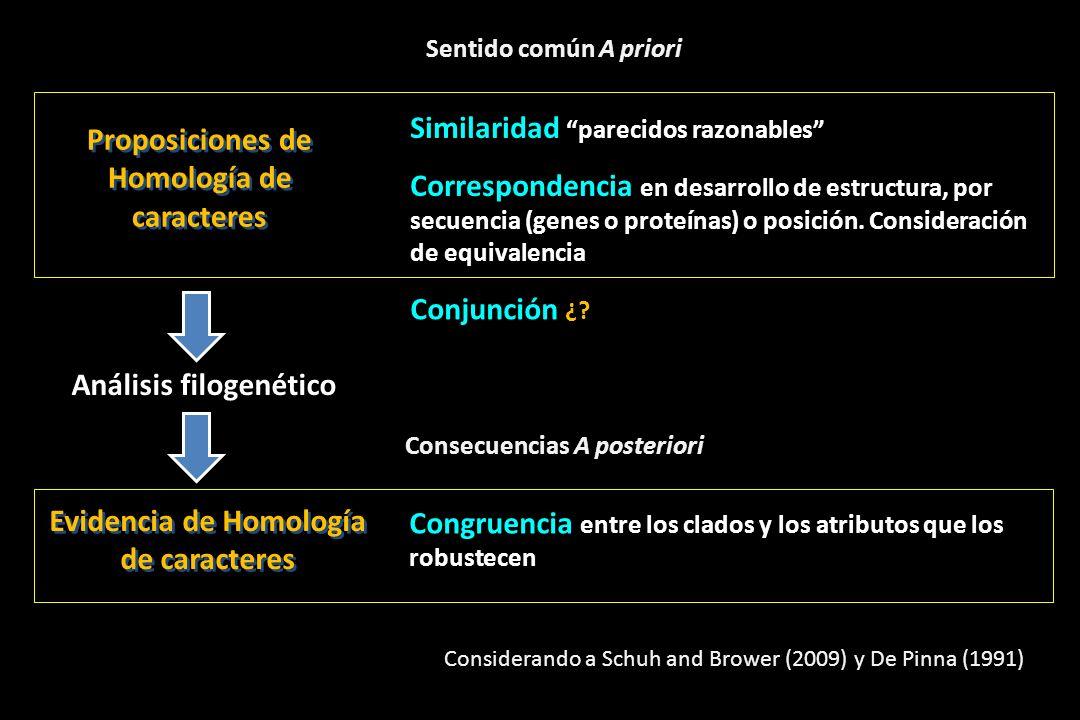 Proposiciones de Homología de caracteres
