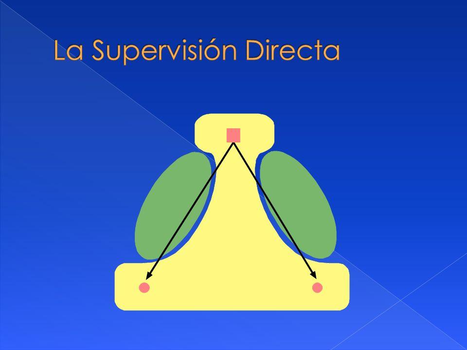 La Supervisión Directa