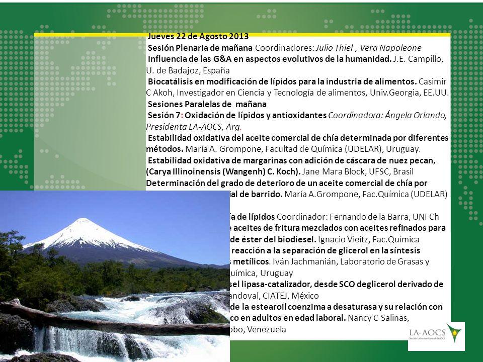 Jueves 22 de Agosto 2013 Sesión Plenaria de mañana Coordinadores: Julio Thiel , Vera Napoleone.