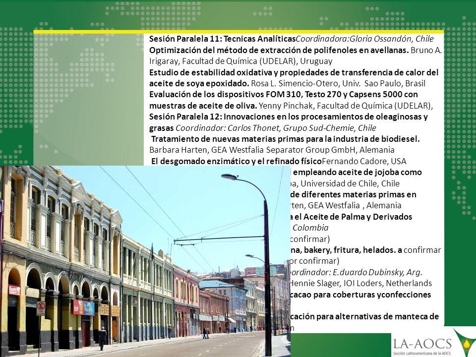 Sesión Paralela 11: Tecnicas AnalíticasCoordinadora:Gloria Ossandón, Chile