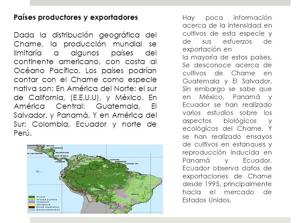 Países productores y exportadores