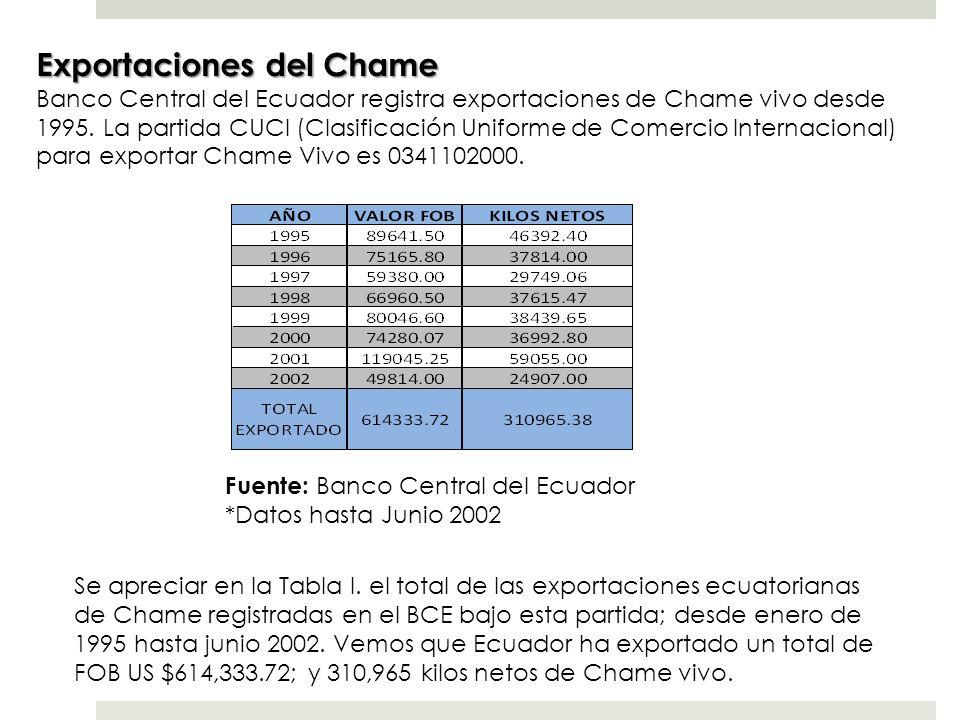Exportaciones del Chame