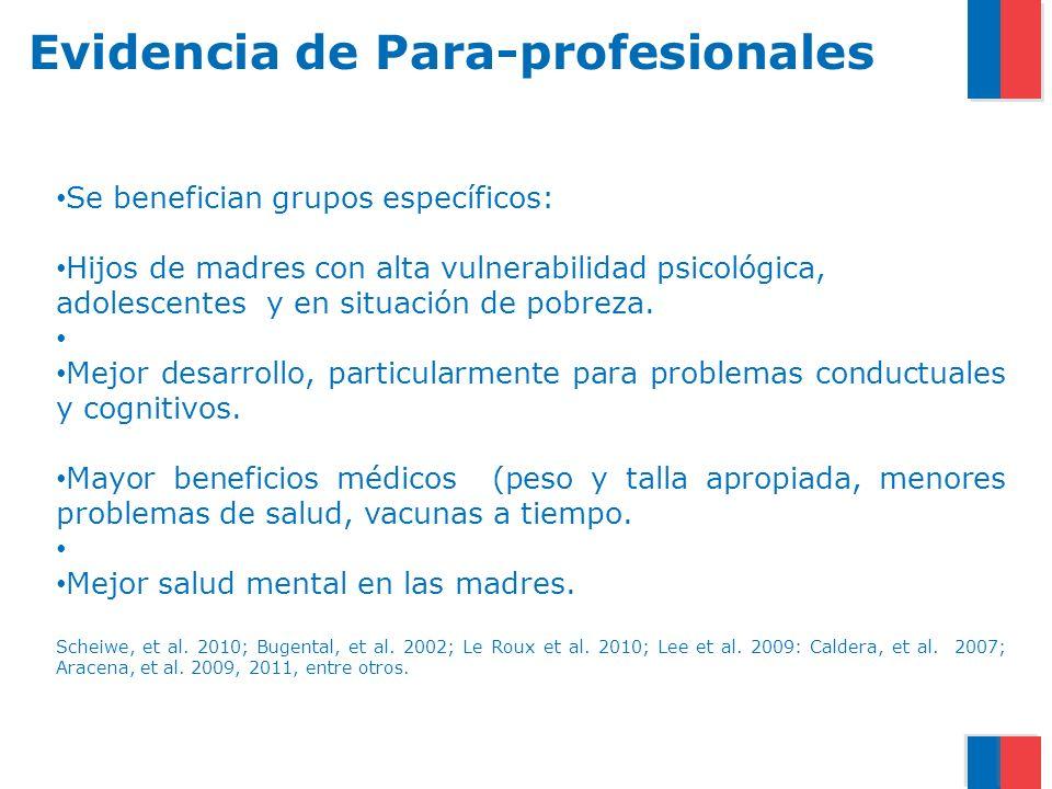 Evidencia de Para-profesionales